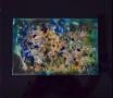 Undersea Solo2